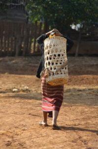Femme karen avec un panier